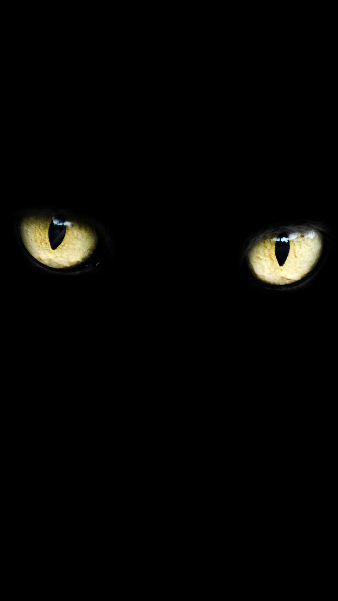 Cat Eyes Hd Wallpaper For Your Mobile