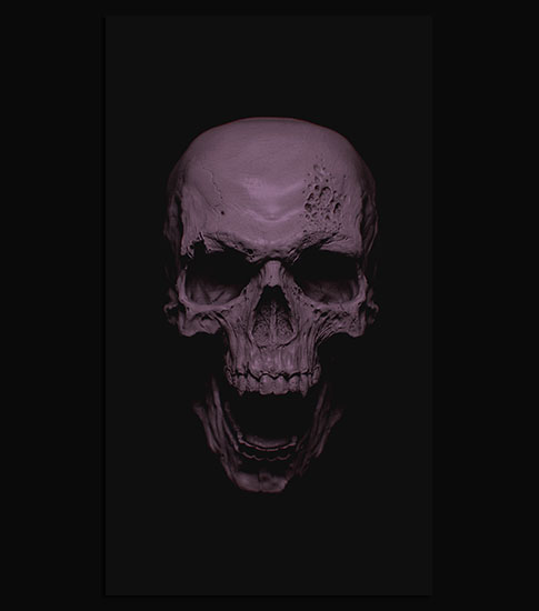 Grey Skull Phone Wallpaper