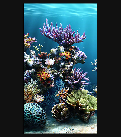 Coral Reef Background: Coral Reef HD Wallpaper For Your IPhone 6