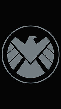 Marvel Shield