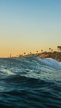 Cali Waves